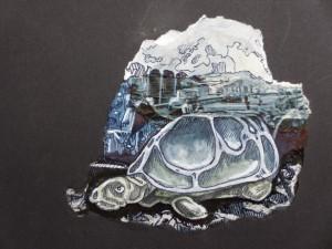 Tagtraum - Schildkröte